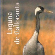 Libros de segunda mano: RUTAS CAI POR ARAGON. - PRAMES 2007 - TOMO 31 - LAGUNA DE GALLOCANTA.. Lote 113125923