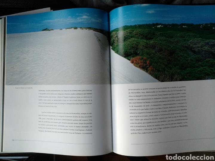 Libros de segunda mano: Doñana cara a cara - Foto 3 - 123278282