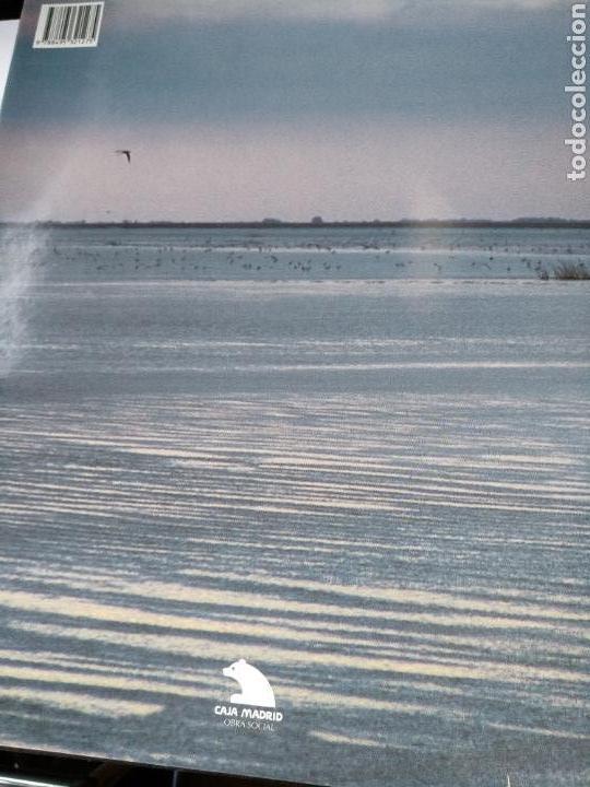 Libros de segunda mano: Doñana cara a cara - Foto 5 - 123278282