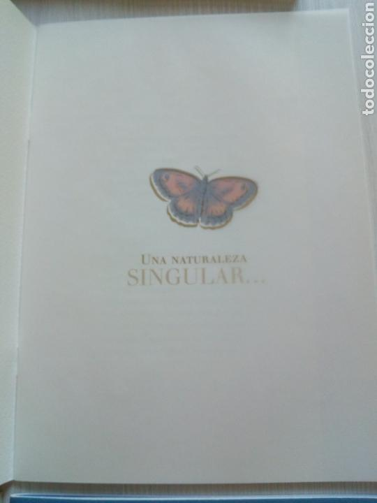 Libros de segunda mano: CAMINOS ABIERTOS CAMINO SANTIAGO HISTORIA ARTE NATURALEZA RUTAS BURGOS - Foto 4 - 132317499