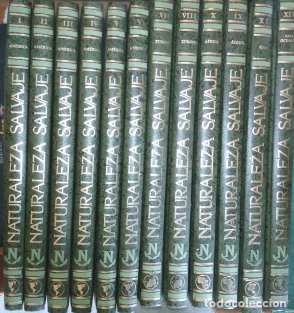 ENCICLOPEDIA DE 12 TOMOS, NATURALEZA SALVAJE, EDICIONES NAUTA 1991, LIBROS (Libros de Segunda Mano - Geografía y Viajes)