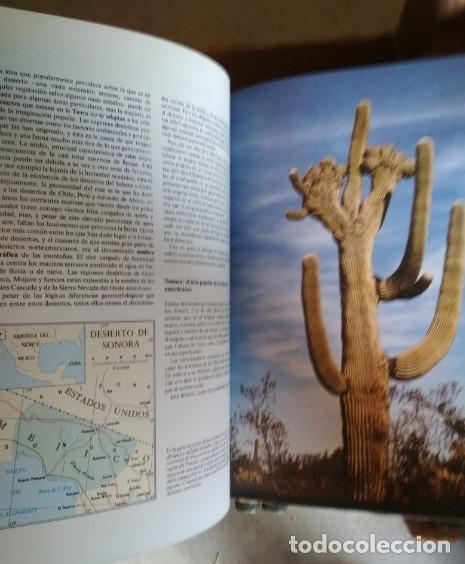 Libros de segunda mano: ENCICLOPEDIA DE 12 TOMOS, NATURALEZA SALVAJE, EDICIONES NAUTA 1991, LIBROS - Foto 4 - 133425794