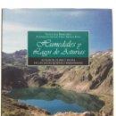 Libros de segunda mano: HUMEDALES Y LAGOS DE ASTURIAS. ECOLOGÍA, FLORA Y FAUNA DE LAS AGUAS QUIETAS Y REMANSADAS - LUIS ARCE. Lote 146387746