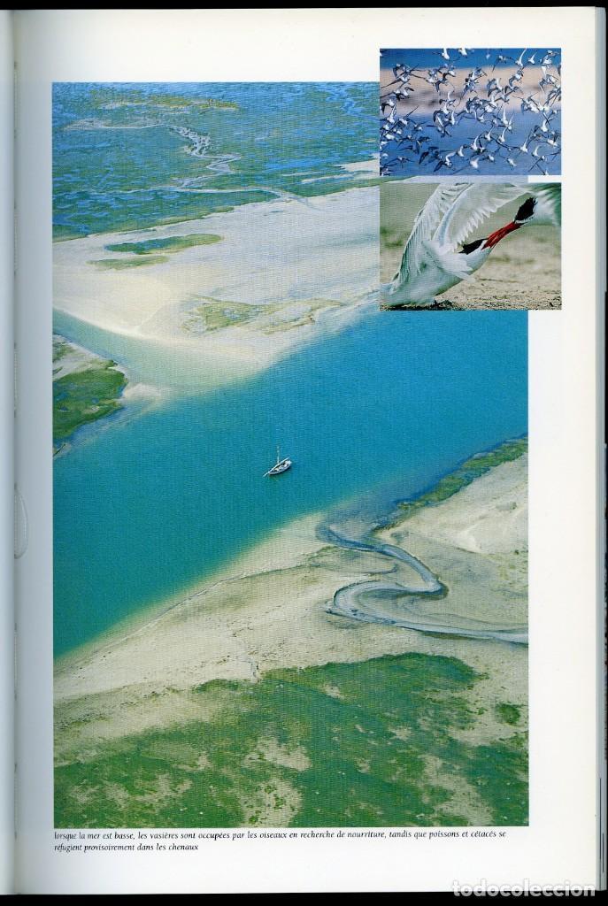 Entre Le Sahara Et Latlantiquele Parc Nationa Buy Books Of