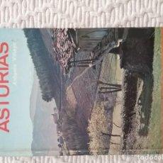 Libros de segunda mano: GUÍA EVEREST ASTURIAS 1972. PEDIDO MÍNIMO 5 EUROS. Lote 156714054