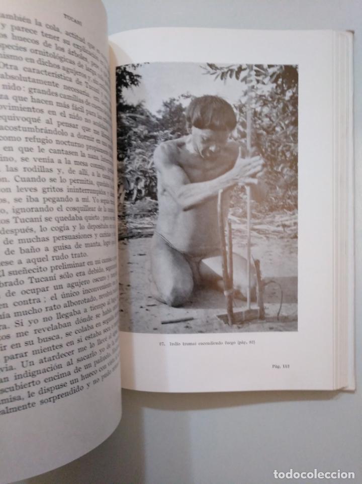 Libros de segunda mano: TUCANÍ. ENTRE LOS INDIOS Y LOS ANIMALES DEL CENTRO DEL BRASIL - SICK, HELMUT. TDKLT - Foto 2 - 158297518