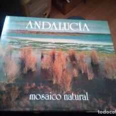 Libros de segunda mano: ANDALUCÍA, MOSAICO NATURAL MADRID, 1989. EDITORIAL INCAFO. JUNTA DE ANDALUCÍA. 190 PP. 25 X 30 CM. . Lote 159371178