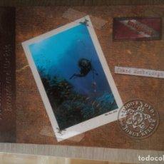 Libros de segunda mano: AROMAS DEL SINAÍ. BUCEANDO EN EL MAR ROJO ** CHANO MONTELONGO. Lote 159543262