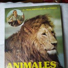Libros de segunda mano: FELIX RODRÍGUEZ DE LA FUENTE ANIMALES SALVAJES 1985. Lote 164601362