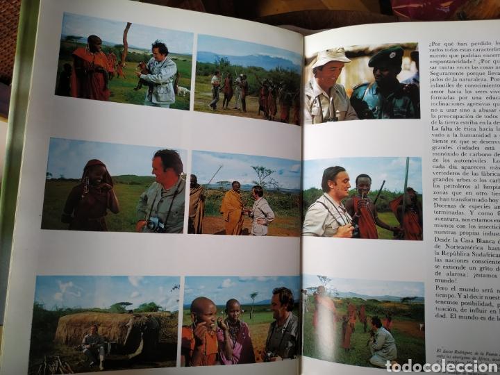 Libros de segunda mano: Felix Rodríguez de la Fuente Animales Salvajes 1985 - Foto 5 - 164601362