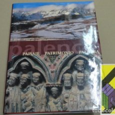 Libros de segunda mano: ALCALDE, GONZALO/ MARTINEZ, RAFAEL/ ORDOÑEZ, CASILDA: PALENCIA. PAISAJE-PATRIMONIO-PALABRA. Lote 179386307