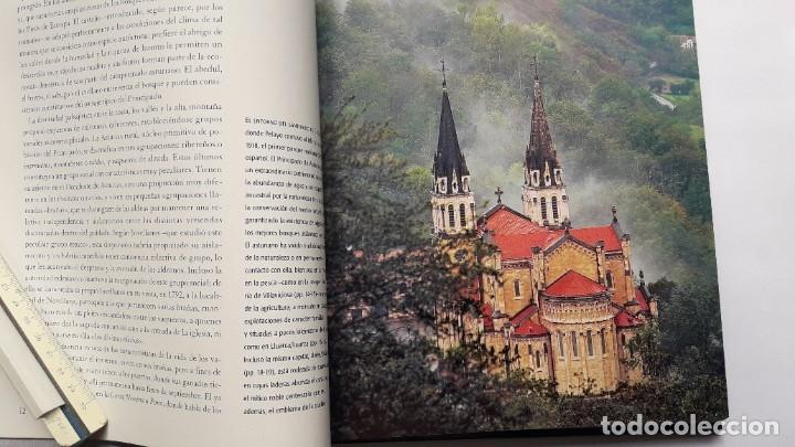 Libros de segunda mano: CONOCER ESPAÑA: ASTURIAS. NATIONAL GEOGRAPHIC. IMPECABLE. - Foto 4 - 180207733
