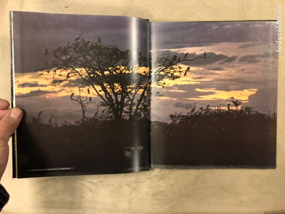 Libros de segunda mano: LOTE DE 20 VOLÚMENES DE LA COLECCIÓN ZONAS SALVAJES DEL MUNDO. LIBROS LIFE-TIME. - Foto 4 - 210552880