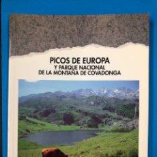 Libros de segunda mano: PICOS DE EUROPA Y PARQUE NACIONAL DE LA MONTAÑA DE COVADONGA - SENDAI 1993. Lote 190421626