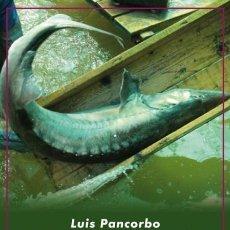 Libros de segunda mano: CAVIAR, DIOSES Y PETRÓLEO. LUIS PANCORBO.-NUEVO. Lote 252399880