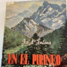 Libros de segunda mano: EN EL PIRINEO SE VIVE DE PIE. Lote 203998685