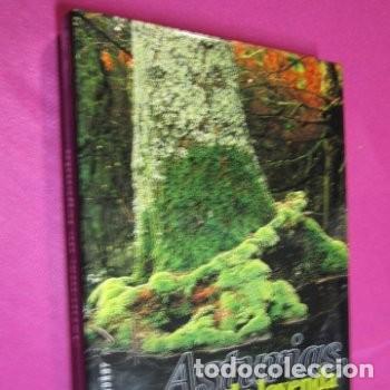 Libros de segunda mano: ASTURIAS DE LEYENDA ASTURIAS PARA SOÑAR HERCULES ASTUR - Foto 3 - 223415276