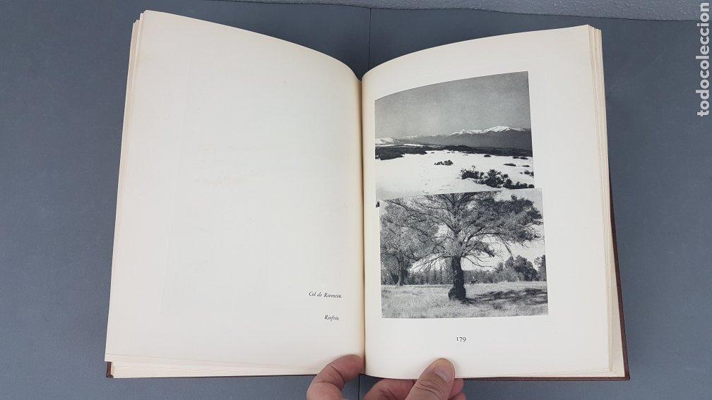 Libros de segunda mano: EXCELENTE LIBRO DE FOTOGRABADOS, ROBERT GILLON DE SEGOVIA. AÑO 1949.EDIC. NUMERO 322. DESCATALOGADO - Foto 30 - 235450250
