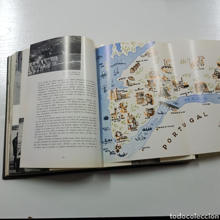 Libros de segunda mano: BAJO MIÑO Y COSTA SUR 1967 ELISEO ALONSO - Foto 5 - 236717310