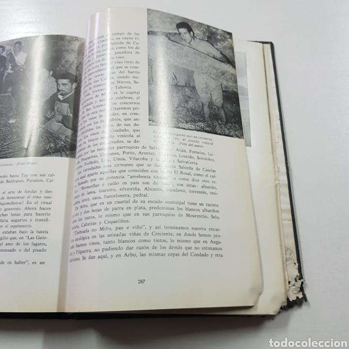 Libros de segunda mano: BAJO MIÑO Y COSTA SUR 1967 ELISEO ALONSO - Foto 6 - 236717310
