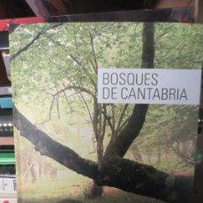 Libri di seconda mano: BOSQUES DE CANTABRIA. RAFAEL GOMEZ DEL ALAMO.. Lote 236935820