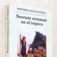 Libros de segunda mano: SESENTA SEMANAS EN EL TRÓPICO - ESCOHOTADO, ANTONIO. Lote 251359520