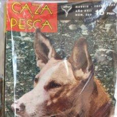 Libros de segunda mano: REVISTA CAZA Y PESCA AÑO 1965 COMPLETO. Lote 253142475