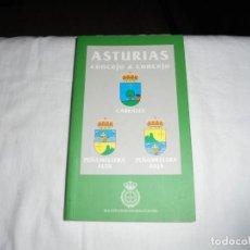 Libros de segunda mano: ASTURIAS CONCEJO A CONCEJO CABRALES/PEÑAMELLERA ALTA/PEÑAMELLERA BAJA.RIDEA 1997 OVIEDO. Lote 278291873