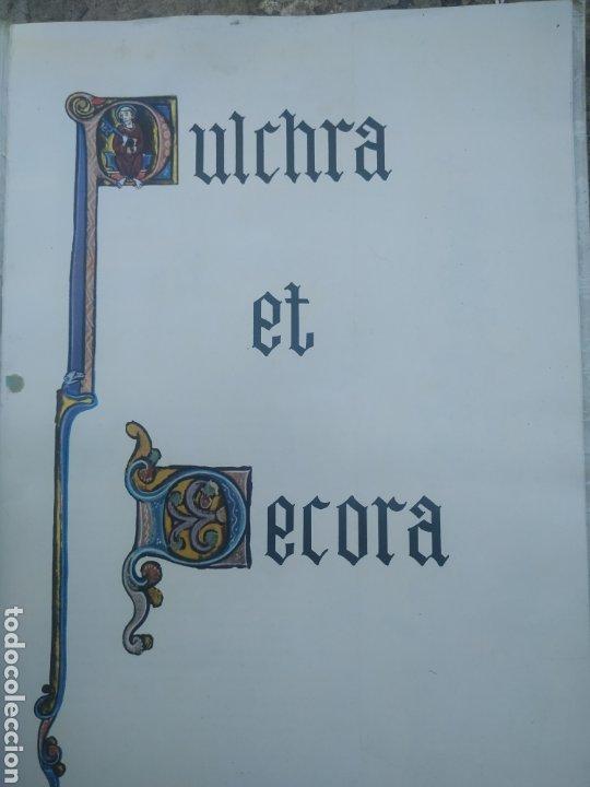 Libros de segunda mano: La catedral de Burgos 1964 - Foto 2 - 278690998
