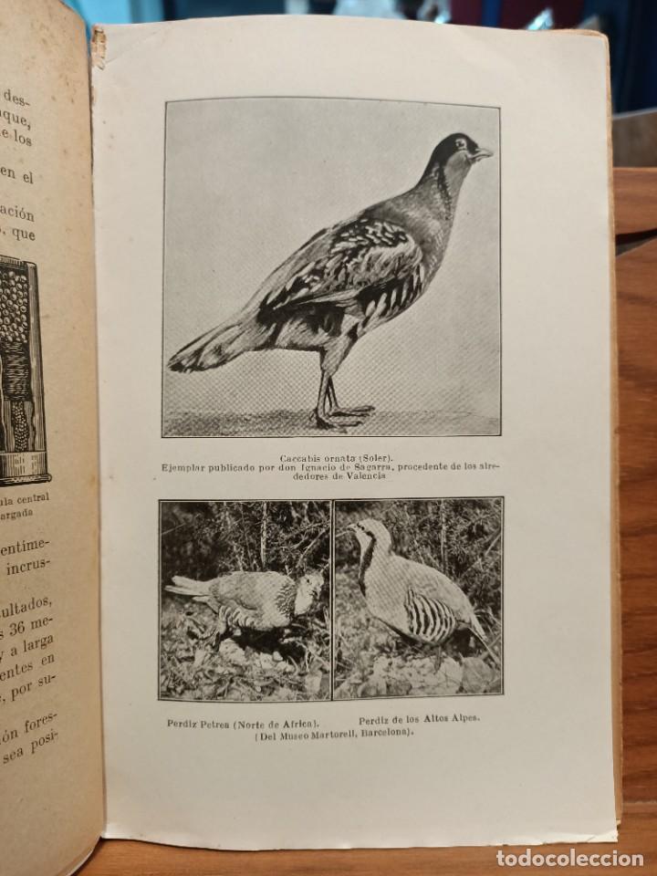 Libros de segunda mano: MIS HORAS DE CAZA - PRACTICAS DE CAZA - BERNAT DURAN , J. - con fotografías - Foto 2 - 288561453