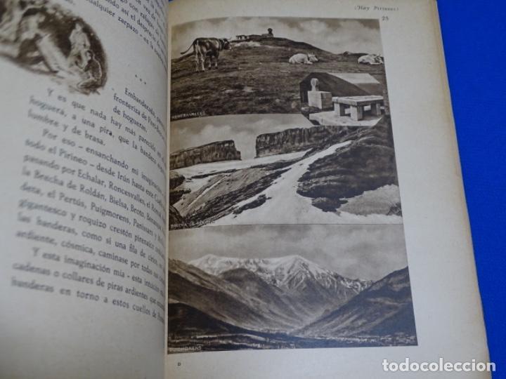 Libros de segunda mano: HAY PIRINEOS.GIMENEZ CABALLERO.1939.NOTAS DE UN ALFÉREZ EN LA IV DE NAVARRA LA CONQUISTA PORT-BOU. - Foto 5 - 222085156