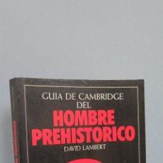Libros de segunda mano: GUIA DE CAMBRIDGE DEL HOMBRE PREHISTORICO. DAVID LAMBERT. ILUSTRADO. Lote 47298353