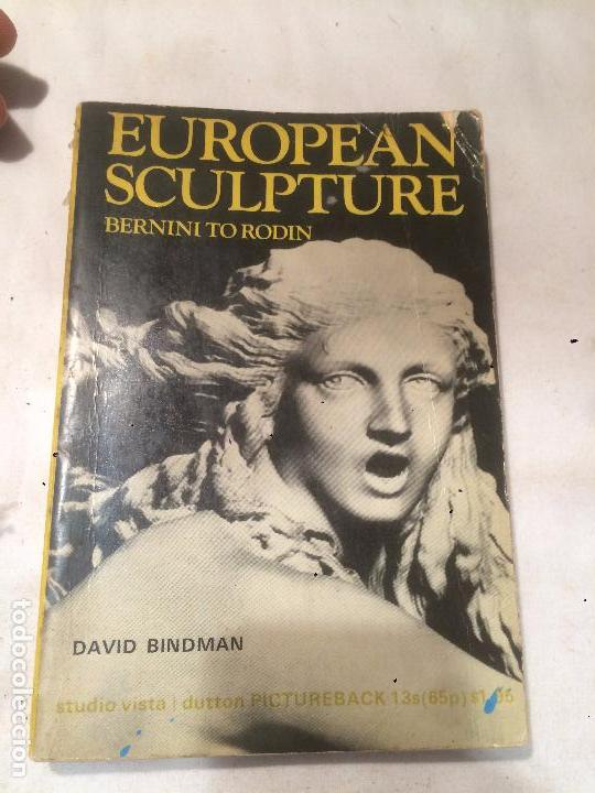 ANTIGUO LIBRO EUROPEAN SCULPTURE BERNINI TO RODIN ESCRITO POR DAVID BINDMAN AÑO 1970 (Libros de Segunda Mano - Historia Antigua)