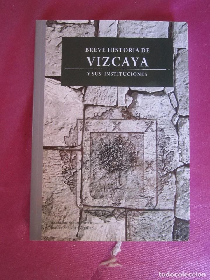 BREVE HISTORIA DE VIZCAYA Y SUS INSTITUCIONES ASCENSION PASTOR COMO NUEVO (Libros de Segunda Mano - Historia Antigua)