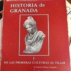Libros de segunda mano: HISTORIA DE GRANADA. TOMO 1: DE LAS PRIMERAS CULTURAS AL ISLAM. FERNANDO MOLINA GONZALEZ - JOSE MANU. Lote 115573627