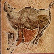 Libros de segunda mano: BRODRICK : LA PINTURA PREHISTÓRICA (FONDO DE CULTURA, 1965). Lote 117928863