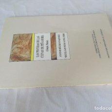Libros de segunda mano: LAS PINTURAS DE LAS CUEVAS DE PEÑA RUBIA-CEHEGIN-MURCIA-ANTONIO BELTRAN MARTINEZ; MIGUEL SAN NICOLAS. Lote 128157479