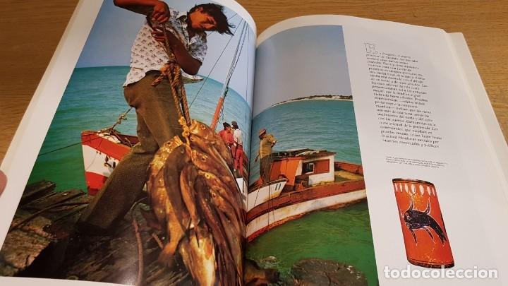 Libros de segunda mano: LOS MAYAS / GEORGE E Y GENE S STUART / NATIONAL GEOGRAPHIC - 1999 / BUENA CALIDAD. - Foto 6 - 142957026