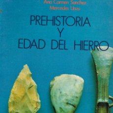 Libros de segunda mano: PREHISTORIA Y EDAD DE HIRERRO EN NAVARRA (ANA CARMEN SANCHEZ Y MERCEDES UNZU), VER INDICE Y PAGINAS . Lote 146994738