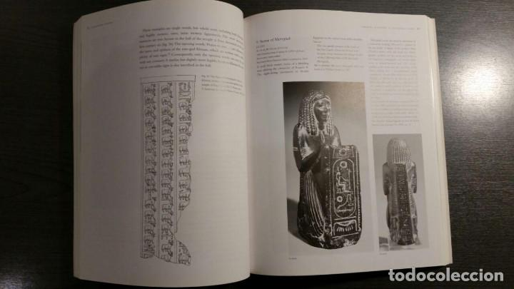 Libros de segunda mano: Cracking Codes: The Rosetta Stone and Decipherment - Foto 8 - 147740430