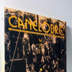 Libros de segunda mano: CANELOBRE ·· 1991 · INSTITUTO DE CULTURA JUAN GIL ALBERT ·· Nº 20 - 21 ·· ALICANTINOS EN EL EXILIO. Lote 154014726