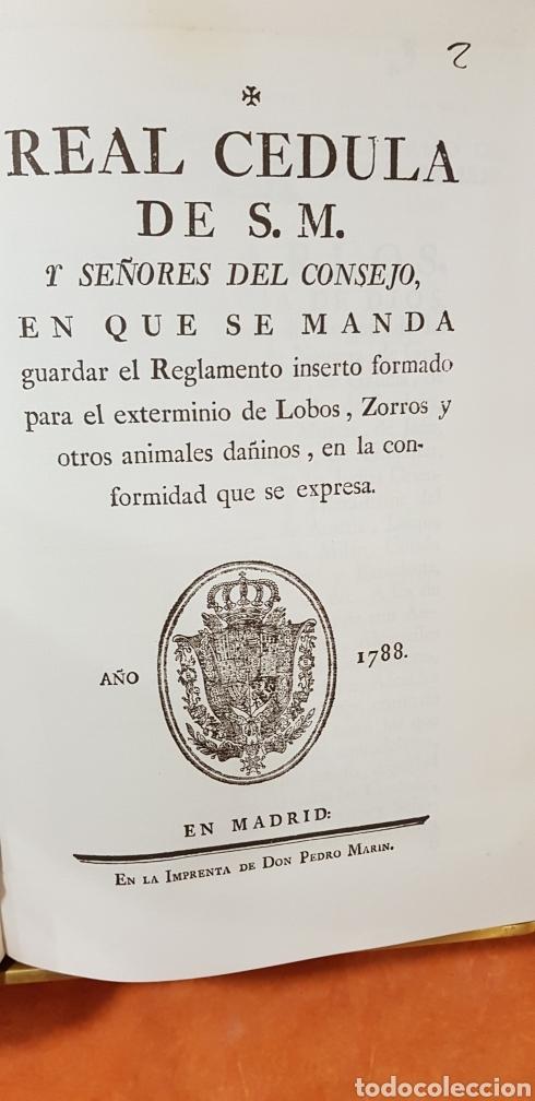 Libros de segunda mano: PROVIDENCIAS DEL CONSEJO,1788,facsimil. - Foto 5 - 160783738