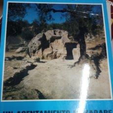 Libros de segunda mano: EL ASENTAMIENTO MOZARABE EN LA ZONA DE ALOZAINA RAFAEL PUERTAS TRICAS. Lote 179076790