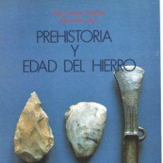 Libros de segunda mano: PREHISTORIA Y EDAD DEL HIERRO. NAVARRA. PANORAMA. 2. Lote 180237568
