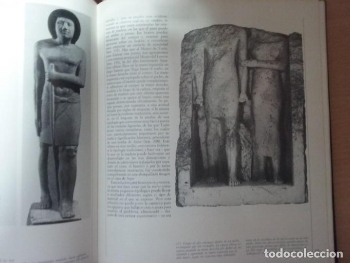Libros de segunda mano: CIVILIZACIÓN DE LOS EGIPCIOS. LAS ARTES DE LA CELEBRACIÓN - MUSEO EGIPCIO DE TURIN - Foto 8 - 187438775