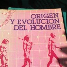 Libros de segunda mano: ORIGEN Y EVOLUCIÓN DEL HOMBRE ARQUEOLOGÍA DE BELLAS ARTES MINISTERIO DE CULTURA 1984. Lote 193914280