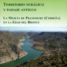 Libros de segunda mano: TERRITORIO NURÁGICO Y PAISAJE ANTIGUO. LA MESETA.. ED. SERVICIO DE PUBLIC. UNIV.COMPLUTENSE. PP. 251. Lote 194713278