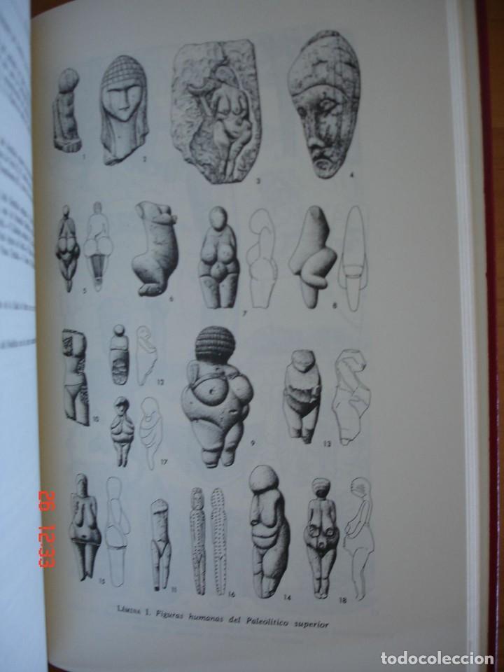Libros de segunda mano: HISTORIA DE LA EDAD DE PIEDRA - HERMANN MÜLLER KARPE - EDITORIAL GREDOS, 1982 - 1ª EDICIÓN - Foto 5 - 206779870
