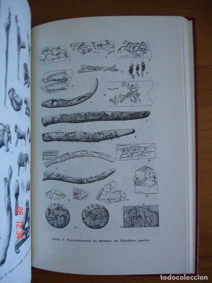 Libros de segunda mano: HISTORIA DE LA EDAD DE PIEDRA - HERMANN MÜLLER KARPE - EDITORIAL GREDOS, 1982 - 1ª EDICIÓN - Foto 7 - 206779870