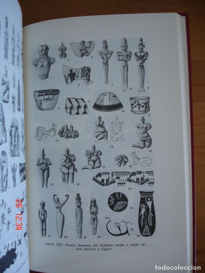 Libros de segunda mano: HISTORIA DE LA EDAD DE PIEDRA - HERMANN MÜLLER KARPE - EDITORIAL GREDOS, 1982 - 1ª EDICIÓN - Foto 8 - 206779870